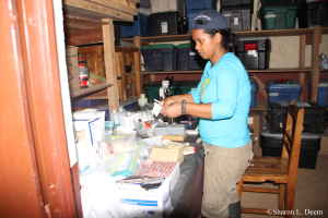 Mino in the field laboratory.